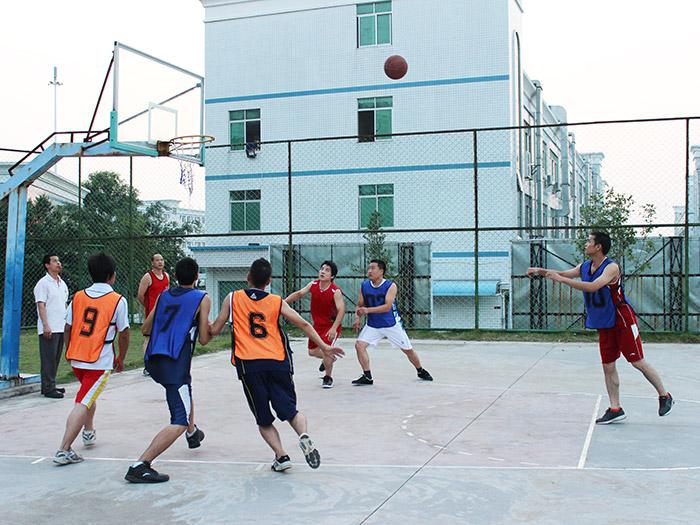 国塑篮球比赛